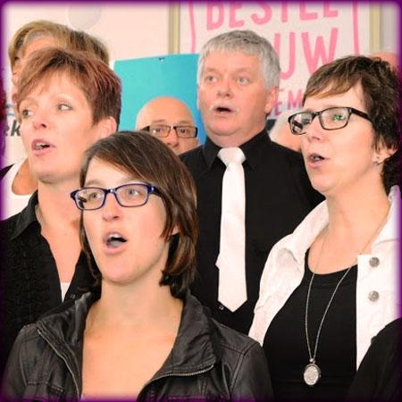 Over ons: enkele leden van Vox Five zingen erop los